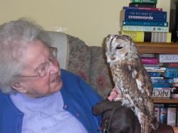 Gwen and a Tawny Owl Gallery