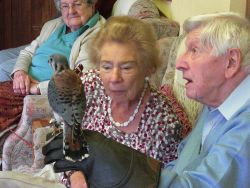 Mildred and Ron and a Kestrel Gallery